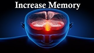 Improve Memory Increase Your Brain Power With Sound Therapy Sublimina