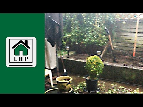 Patio Gardening - How I Made My Small Space Garden Productive - LHP