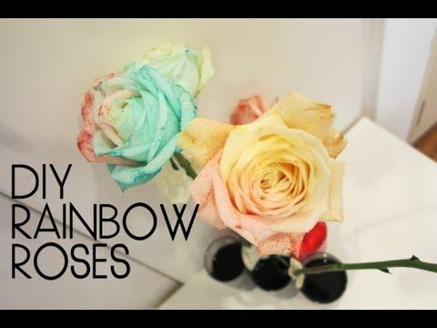 DIY ♥ Rainbow Roses