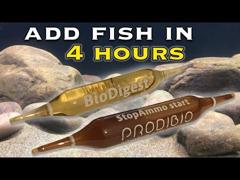 Add Fish to a New Aquarium in 4 Hours with 'Prodibio'