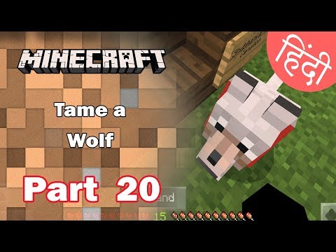 How do you get a wolf as a pets in minecraft pocket edition -