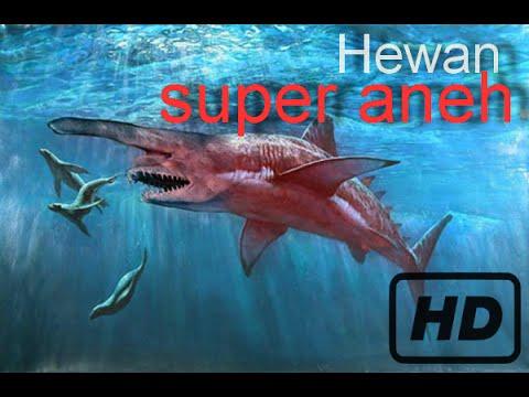 4 Hewan Super Aneh Yang Ada Di Dunia Nyata! HD