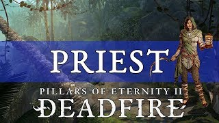Pillars of Eternity 2 Deadfire Guide: Druid - PakVim net HD