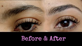 Easy Eyebrows How To Diy Plucking