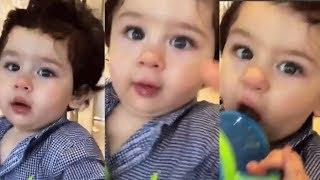 Taimur Ali Khan PLAYS with Jacqueline Fernandez CUTE VIDEO!