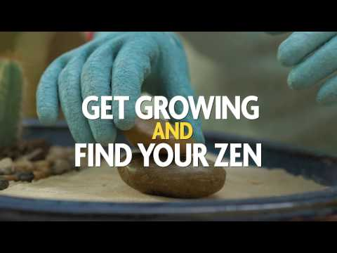 It's Time to Get Growing and Find Your Zen