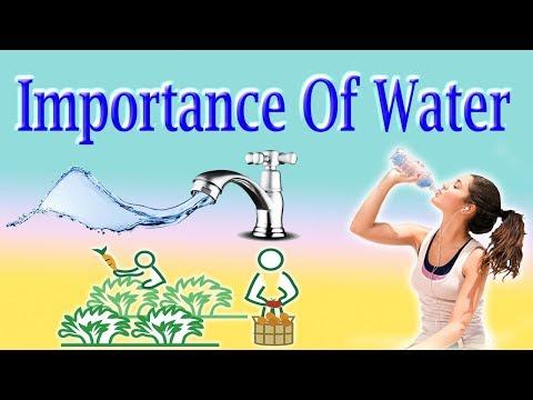 Water - पानी की सम्पूर्ण जानिए इस वीडियो में।