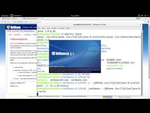 run netbeans with --jdkhome option
