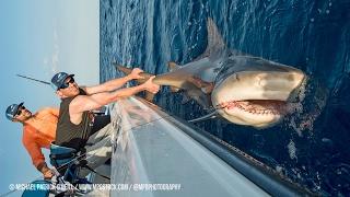 Shark Fishing with New York Mets Pitchers Steven Matz & Sean Gilmartin