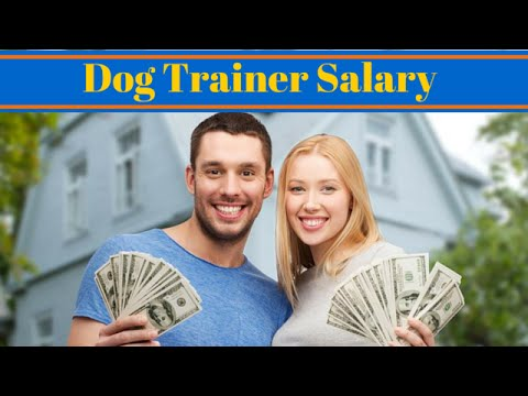 Dog Trainer Salary - Become A Dog Trainer