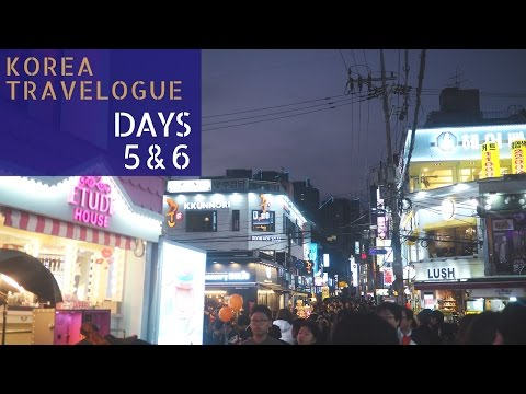 Korea Travelogue (Days 5 & 6): Cookin Nanta Show, DMZ Tour & Thanks Nature Café