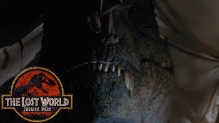 Download The Hidden Butterfly Effect in The Lost World: Jurassic Park - Subtext in Films Video