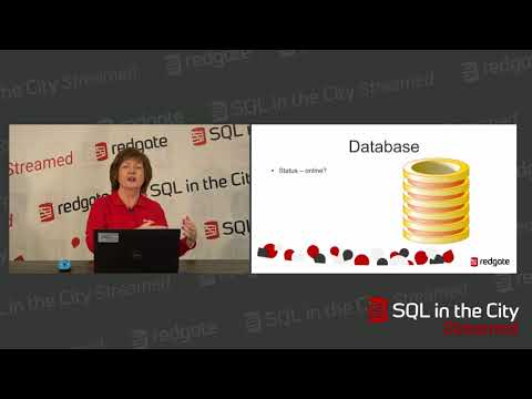 What SQL Server performance metrics should you monitor?