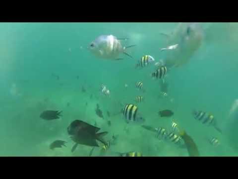Palawan   Pandan Island
