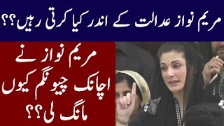 Maryam Nawaz Suspicious Activities Inside Court Exposed