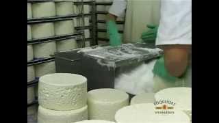 Vidéo Roquefort