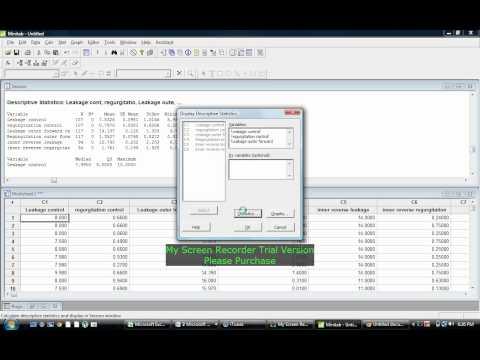 Mean and standard deviation using minitab