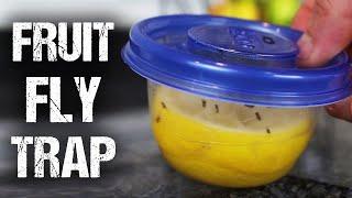 How To Make A Lemon Fresh Fruit Fly Trap