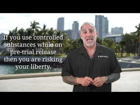(117) Will I get Drug Tested while on PreTrial Release? - Michael A Haber Miami Criminal DUI Lawyer