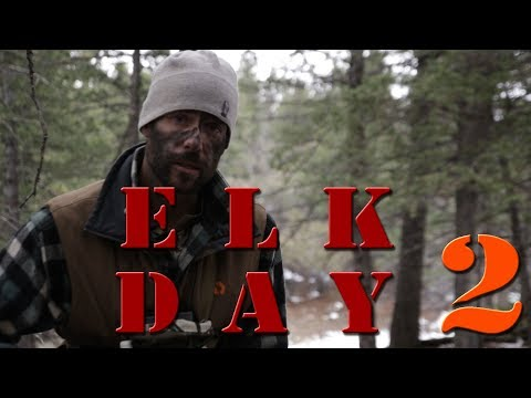 Bow Hunting Elk with recurve Self bow - Clay Hayes Day 2 on Public Land