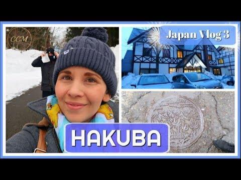 TRAVELLING FROM OSAKA TO HAKUBA | JAPAN TRAVEL SKI VLOG 3 | RIDING THE SHINKANSEN (Bullet Train)