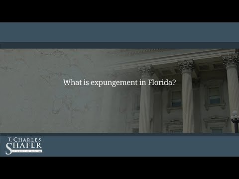 What is expungement in Florida?