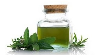How To Make Peppermint Oil Easy And Fast Diy