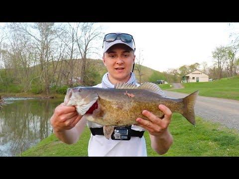 Spring Smallmouth/Walleye Fishing (New River)