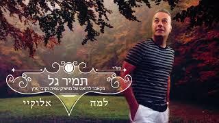 תמיר גל - למה אלוקיי (קאבר חדש 2017)