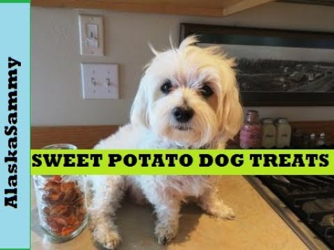 Make Sweet Potato Dog Treats
