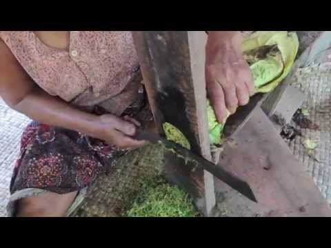 Cutting Tobacco--Cambodian-style! 2