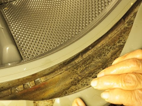 Cleaning a Kenmore Front Loading Washer