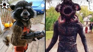 Creative Halloween Costumes People Took To The Next Level