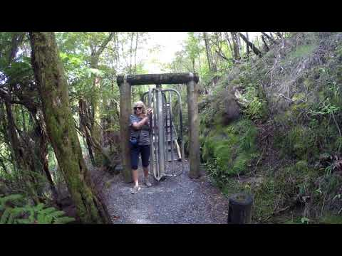 New Zealand 2018 Haruru Falls and Waitangi Track