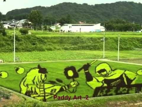 Paddy Rice Art in Japan!