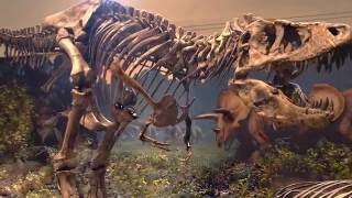 Scientists Baffled-New Discoveries-Darwinian Evolution Crumbling-Scientists Abandon Theory