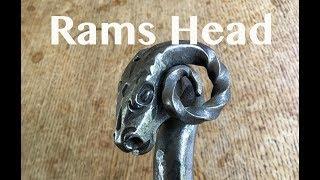 Download Rams Head Video
