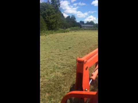 Cutting hay with a bush hog!