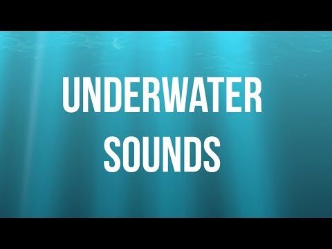 White noise: Underwater sounds
