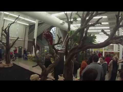 Reptile Expo 2015