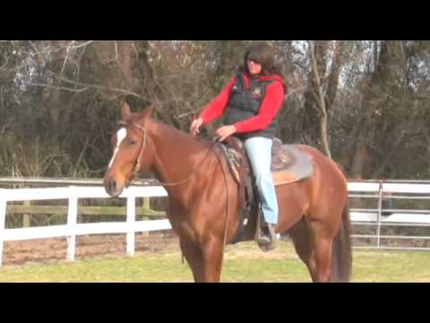 How to Train a Horse to Lope