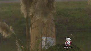Genital shaped mailbox in Englewood Florida