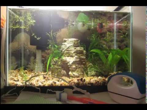 Supplies for Cleaning Glass and Decor in Fish Tank
