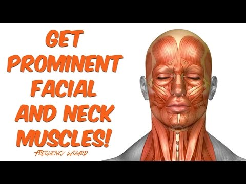 Get Profound Face & Neck Muscles Fast! Subliminal Binaural Beat Hypnosis Frequency