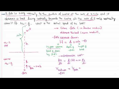 Ray Optics Problem in Relative Velocity of Bird with respect to Fish for IIT-JEE and NEET Physics