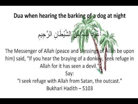 Dua when hearing the barking of a dog at night