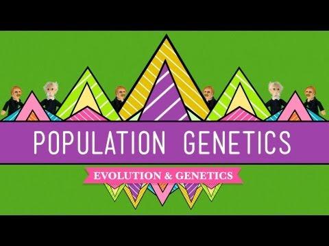 Population Genetics: When Darwin Met Mendel - Crash Course Biology #18