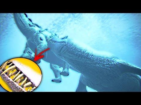 ARKS Most Useful Creature? - Bary, Ammonite, Basilosaurus, Liopleuordon (  ARK Dev Kit Gameplay )
