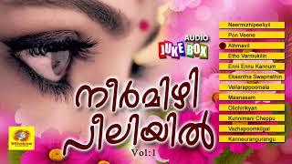 നീർമിഴി  പീലിയിൽ  | Neermizhi peeliyil | Evergreen Malayalam Hit Songs 2017