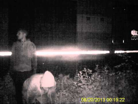 Cable theft footage nottingham